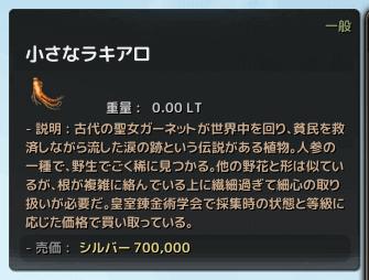 180802 小さなラキアロ