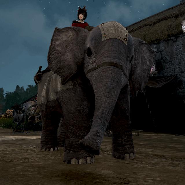 180830 彩花の荷車象